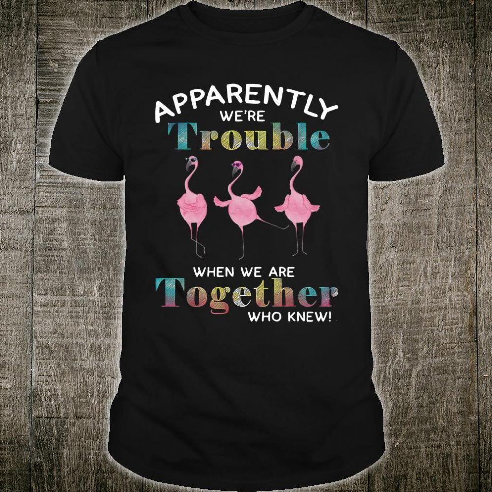Flamingos apparently were trouble when we are together who knew shirt